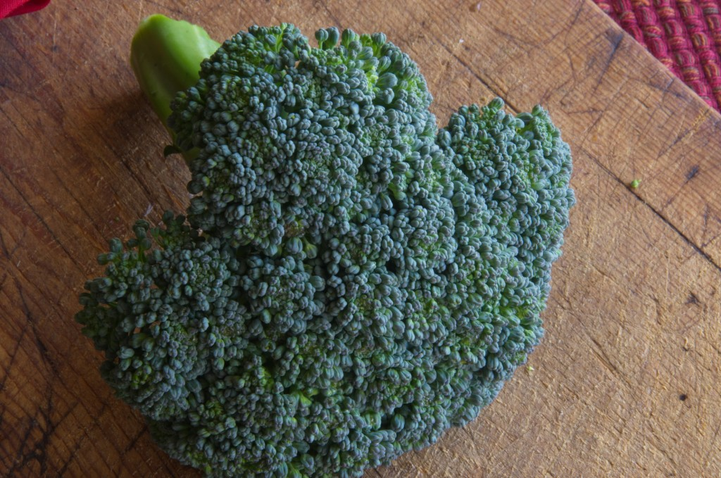 Fresh broccoli, the color is so awesome.